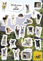 StickerNoseDogs